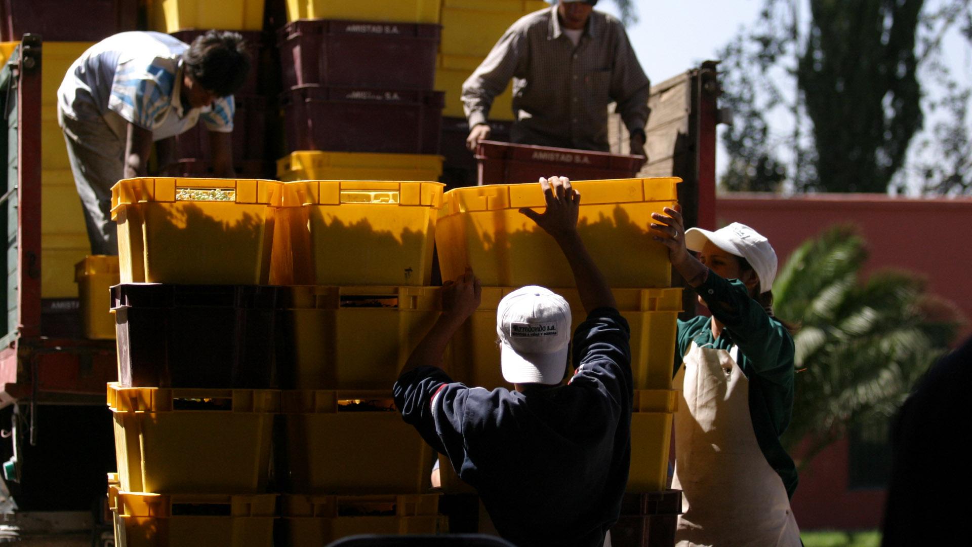exportaciones vino